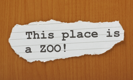 madhouse: The phrase This Place is a ZOO! typed on a scrap of paper and left on a wooden effect background