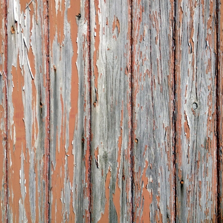 weather beaten: Close up of a wooden background with aged, knotted panels and peeling brown paint.