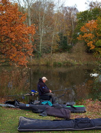 municipal editorial: Bracknell,England - November 23, 2016: Person fishing with rod and reel on the banks of a public lake on a cloudy November day in Bracknell, England