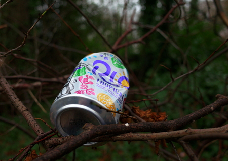 Bracknell, England - December 12, 2018: Discarded soda or soft drink can in the branches of a bush with the trees of a forest in the background Editorial