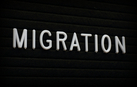 The word Migration in white plastic letters  on a felt letter board Stock Photo