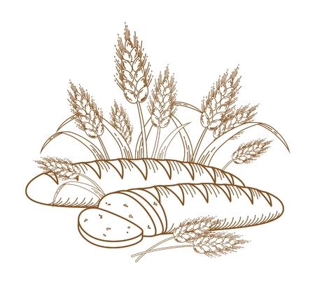 Illustrazione di orecchie mature e pane per i vostri progetti.