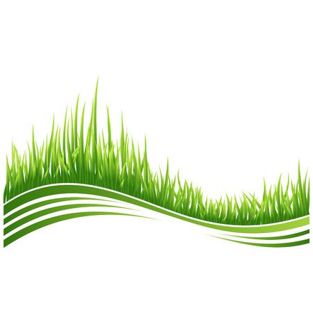 wawe: illustration of green grass wave background.