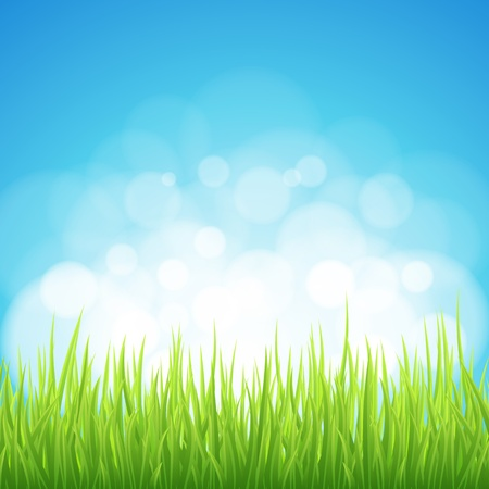 Spring background. Abstract backdrop with green grass. Bokeh design.