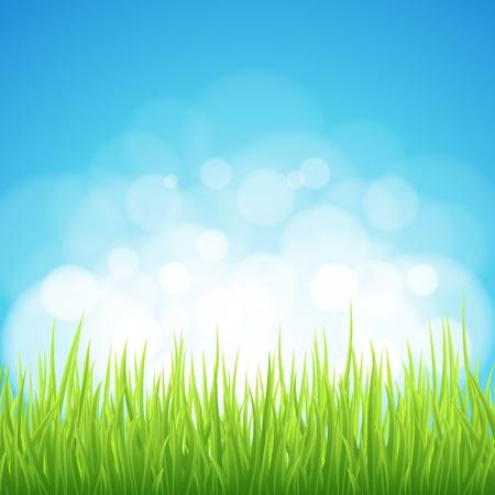 Spring background. Abstract backdrop with green grass. Bokeh design. Stock Vector - 12810999