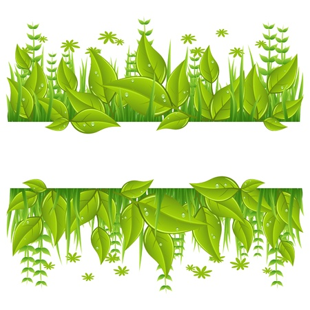 garden design: Green eco line with leafs. Isolated On White Background. Illustration
