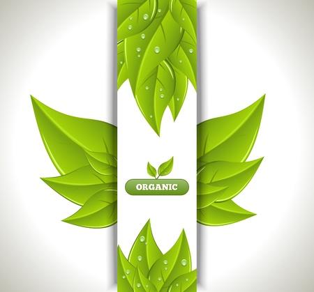 environnement entreprise: Banni�re Eco. Illustration