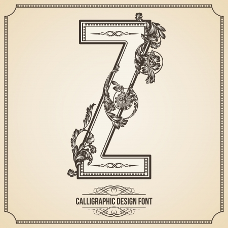Calligraphic Design Font with Typographic Floral Elements for your Artworks. Nice for Page Decoration. Letter Z. Vector