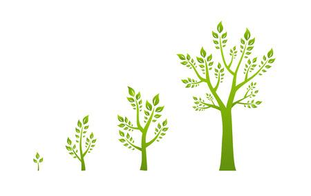 vite: Albero verde di eco concetto di crescita