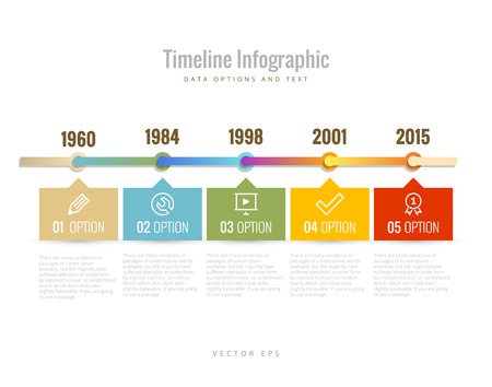 Timeline Infographic with diagrams, data options and text Vector