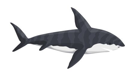 Vector whale shark character. Underwater sea animal. Big dangerous marine predator. Illustration of Marine wildlife Ilustração
