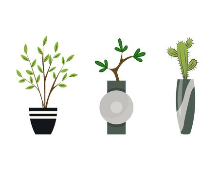 Collection of indoor house plants in pots. Home decorative and deciduous plants in a flat style. Set of elements for design house, room or office. Indoor garden potted plants isolated on white