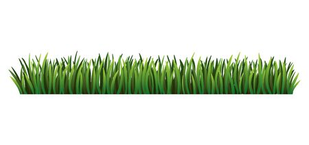 Green grass border. Fresh green grass. Isolated on transparent background. Vector Illustration for use as design element