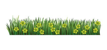 Green grass border. Fresh green floral grass. Isolated on transparent background. Vector Illustration for use as design element