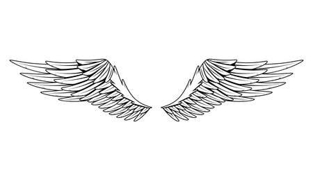 Vintage heraldic wings. Monochrome stylized birds wings. Design elements in coloring style. Abstract sketch.