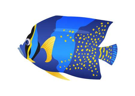 Decorative sea or aquarium fish on white background. Freshwater or saldwater aquarium cartoon fish. Variet of ornamental popular fish Çizim