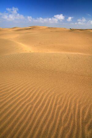 sand dune, india photo