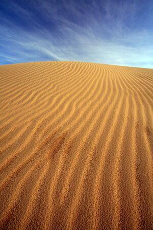 thar: sand dune, india