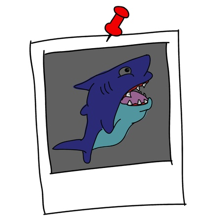 marina life: shark cartoon in picture frame