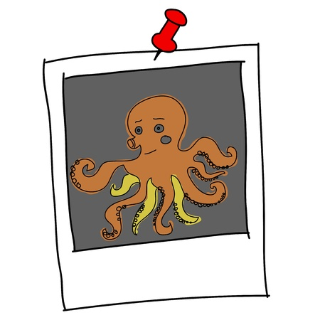 marina life: brown squid cartoon in picture frame Illustration