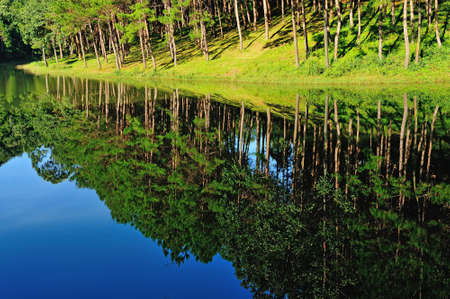 irradiate: Reflection of lake in  Pang Ung Forestry Plantations, Maehongson Province, North of Thailand  Stock Photo