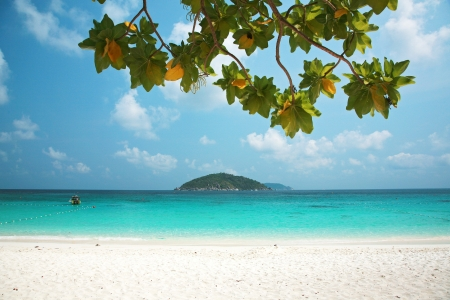 Clear water and white sand at Similan island south of Thailand.  photo