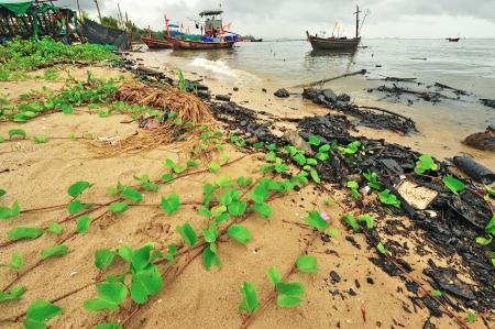 oil polution on the beach, Thailand photo