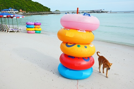 Colored ring on the beach at coral island or Koh Larn ,Pattaya Thailand  photo