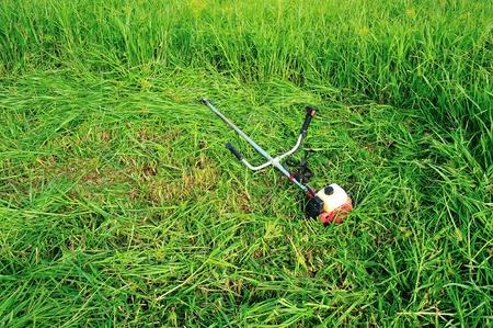 cutter grass  photo