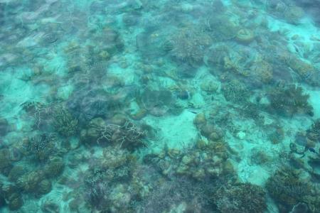 A view of  sea celebes ocean photo