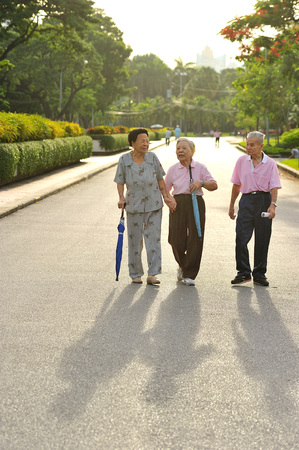 public park: BANGKOK TAILANDIA - Aug15-grupo de ancianos caminando de ejercicio en Lumpini coraz�n del parque p�blico de Bangkok el Aug15 de 2012 en Bangkok, Tailandia