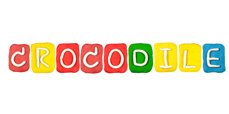 Colorful plasticine alphabet form word CROCODILE photo