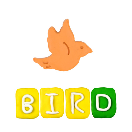 Color childrens bird plasticine on a white background