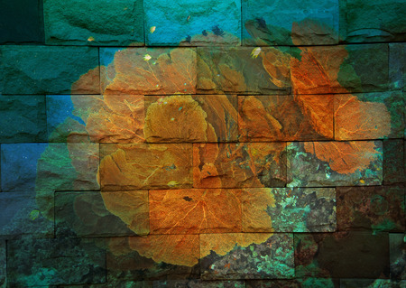 seafan: seafan Mural. The stone painting  concept