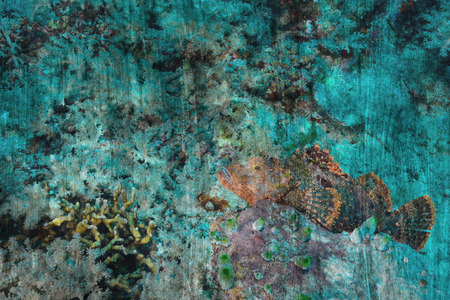stonefish: stonefish on coral reef Mural. The cement painting concept