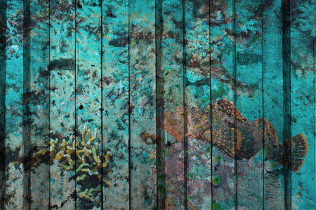 stonefish: stonefish on coral reef Mural. The wood painting concept Stock Photo