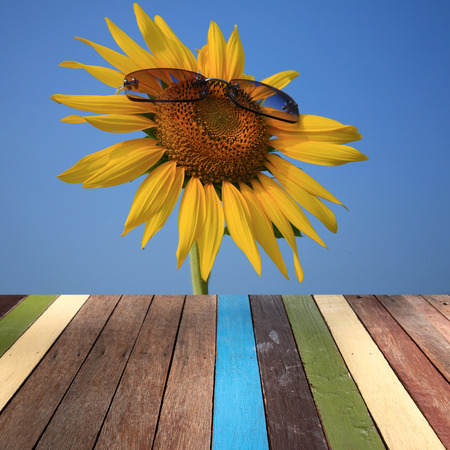 montage: Wood table top on sunflower background montage concept Stock Photo