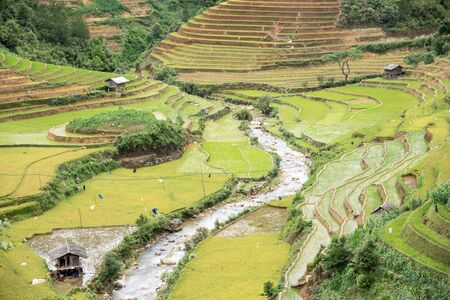 cai: Most Beautiful Rice Terrace in Sapa, Lao cai, Vietnam