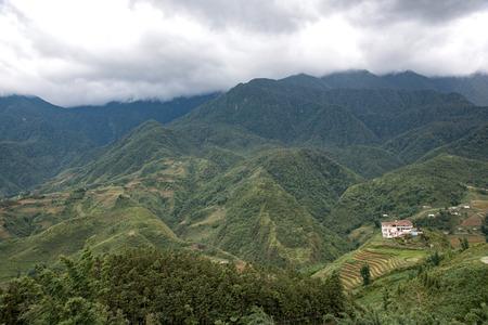 yuan yang: Rice field in valley in Vietnam