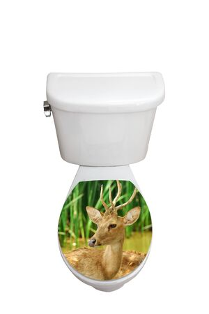 toilet bowl: Toilet bowl, with the closed seat of graphic picture.