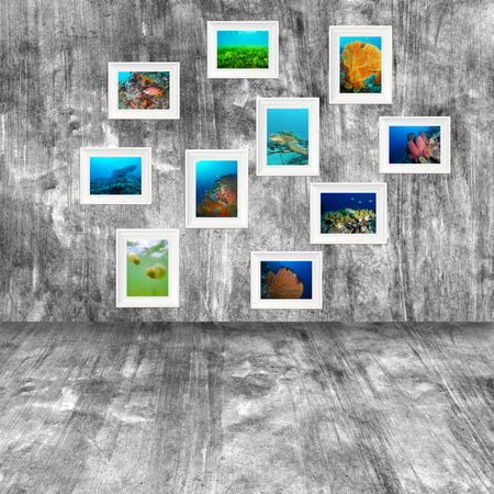 seafan: photo with frame on wooden background