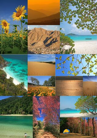 nature photo: The collage Thailand nature photo Stock Photo