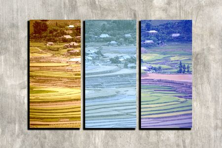 sapa: the collage Sapa, Vietnam photos