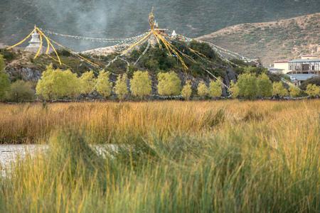 tibetian: Natural trail near Songzanlin temple- Tibetan Monastery in Shangrila, Yunnan, China