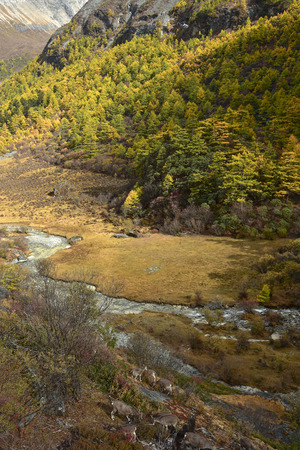 outdoor scenery: Beutiful nature of Colorful autumn in Yading national level reserve