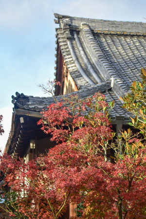 koyo: autumn foliage at Eikando Temple in Kyoto, Japan