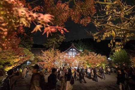 nov: KYOTO, JAPAN - NOV 24: autumn foliage at Eikando Temple on November 24, 2015 in Kyoto, Japan. Editorial