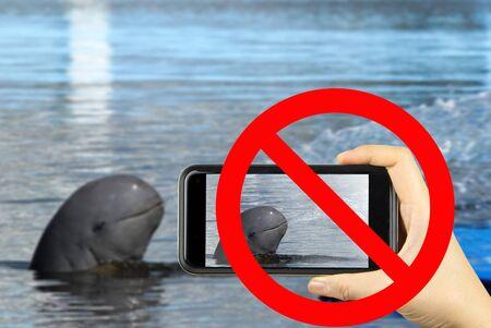forbid: forbid sign no photo dolphin Stock Photo