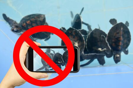 no cameras allowed: Taking photo on smart phone concept with prohibit sign Stock Photo