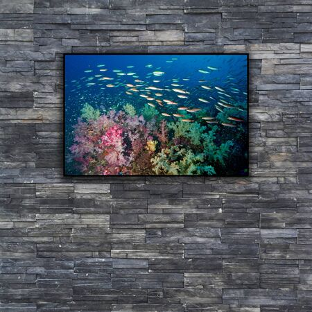 turtles love: black brick wall texture. stonewall pattern design for decorated and interior with nature photo frame